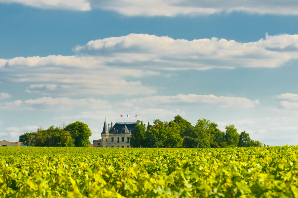 L'immobilier à Bordeaux - le vignoble Margaux