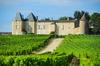 Bordeaux zone loi Pinel - Le château d'Yquem et son vignoble