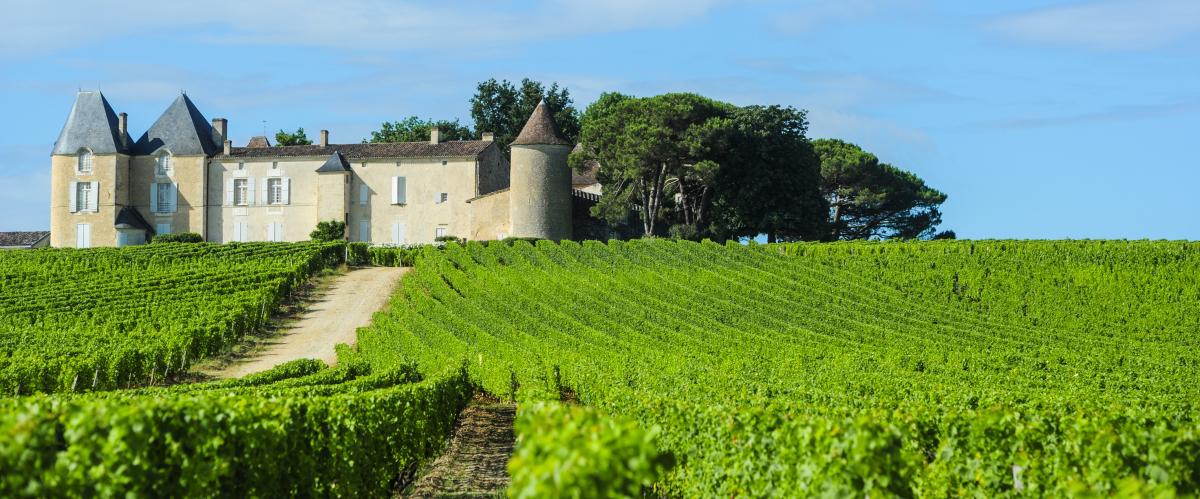 Histoire de Bordeaux - Les vignobles d'Aquitaine et le château d'Yquem