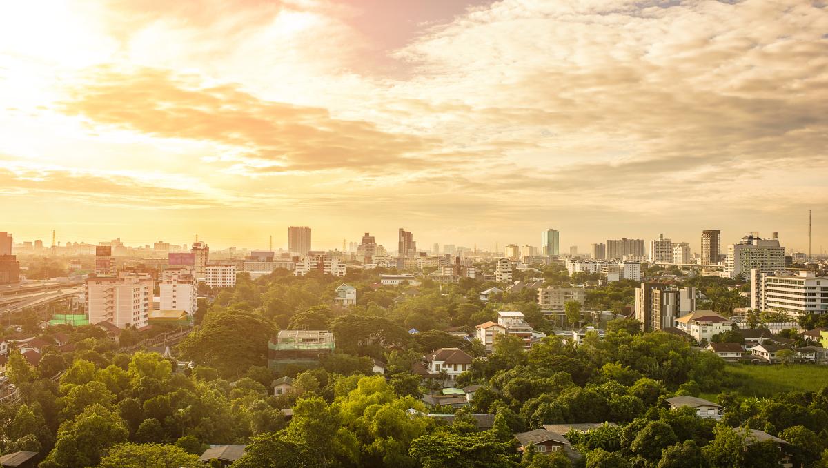 developpement durable bordeaux - Une ville verte et arborée