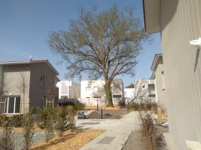 Appartements neufs Parempuyre référence 5801